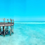 gray wooden dock under clear blue sky