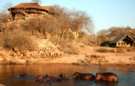RRL RUAHA RIVER LODGEnew dining with hippos -