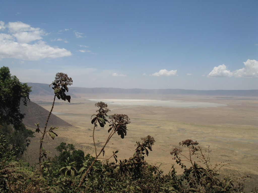 Ngorongoro -